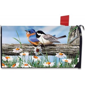 """""""Bird"""" Mailbox Cover Water-Proof Post, 21""""x18"""""""