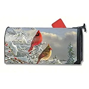 """""""Winter"""" """"linnet"""" Mailbox Cover Water-Proof Post, 21""""x18"""""""