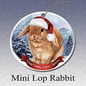 Holiday Pet Gifts Mini Lop Rabbit Santa Hat Porcelain Christmas Tree Ornament
