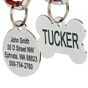 """Stainless Steel"" Multiple Styles Dog Tag Necklaces Pet ID Tag"