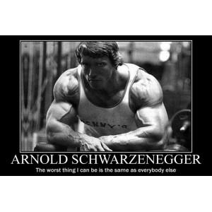 """""""Arnold Schwarzenegger Bodybuilding"""" Customized Silk Print Poster 24"""" x 36"""""""