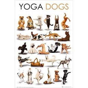 """Yoga Dogs"" Customized Silk Print Poster 24"" x 36"""
